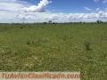 fazenda-de-3-500-hectares-tendo-1100-metros-de-altitude-para-plantio-de-graos-no-brasil-4.jpg