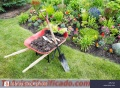 Everything in gardening and landscaping calls 3941876